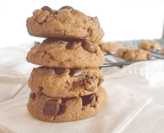 These Peanut Butter Chocolate Chip cookies are perfect for a peanut butter cookie craving! With only five ingredients and in 20 minutes, you could be devouring soft and chewy cookies that are gluten-free, grain-free, egg-free, Paleo and vegan!